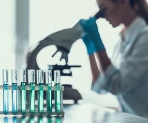 recherche cartilage artificiel